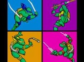 Teenage Mutant Ninja Turtlesr